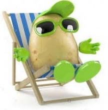 potato in deck chair